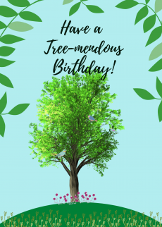 Tree-mendous Birthday
